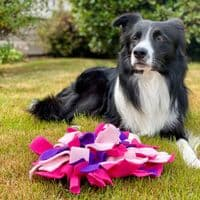 Small Snuffle Mat - Cat and Dog Enrichment Toy